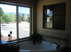 Mstr Tub & Window